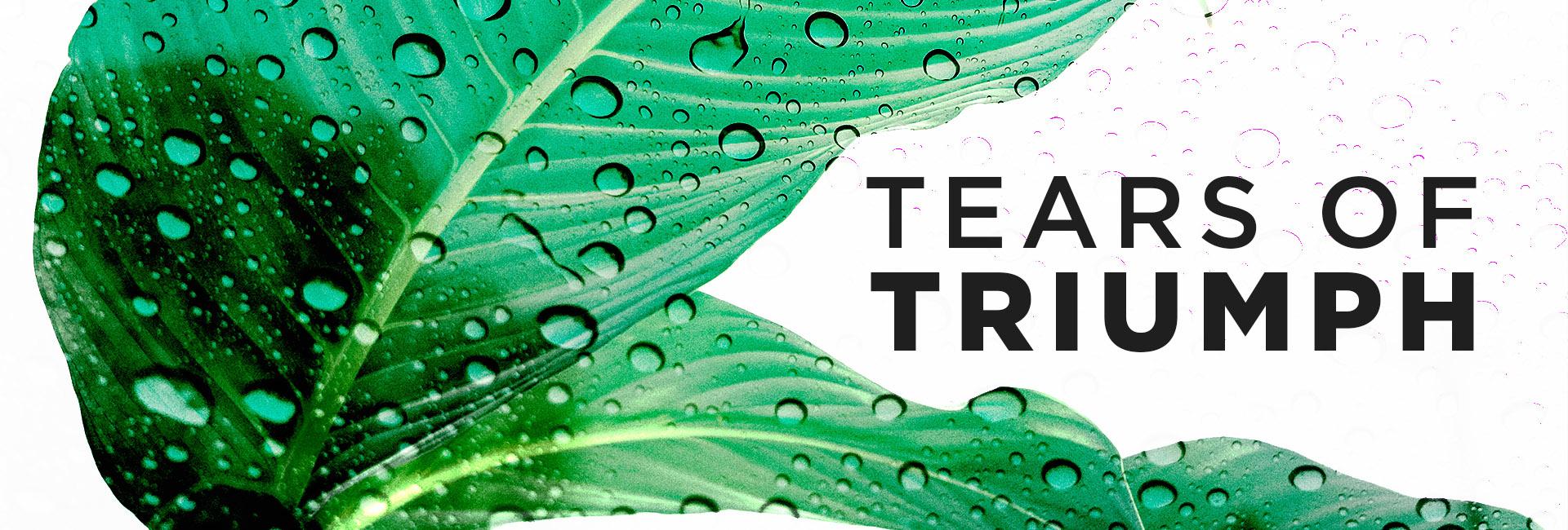 Trials, Tears & Triumph